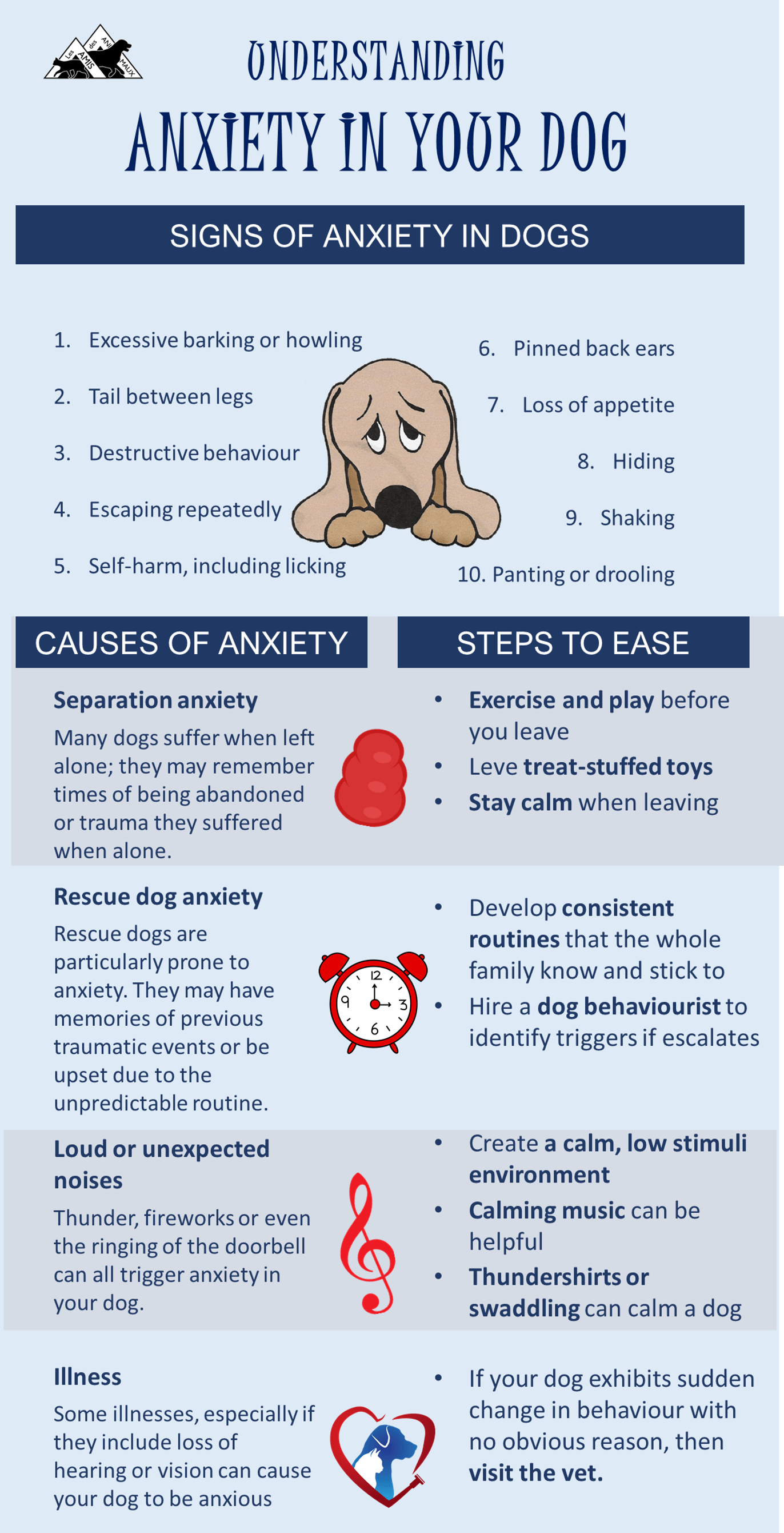 Infographic – understanding anxiety in your dog